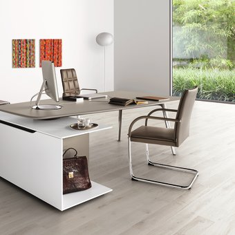 Desk by Walter Knoll